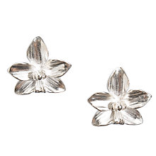 Buy Dower & Hall Silver Paradise Orchid Stud Earrings Online at johnlewis.com
