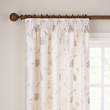 Buy John Lewis Pemberley Rose Pencil Pleat Curtains, Oyster Online at johnlewis.com