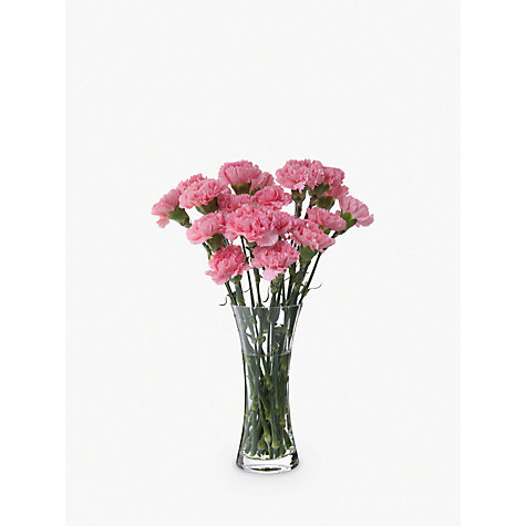 Buy Dartington Florabundance Carnation Flared Vase Online at johnlewis.com