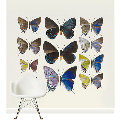 Buy Surface View Brian Hargreaves Lycaenidae Mural Online at johnlewis.com