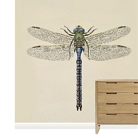 Buy Surface View Dragon Fly III Mural Online at johnlewis.com