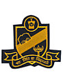 The Swaminarayan School Unisex Senior School Blazer Badge, Black/Yellow