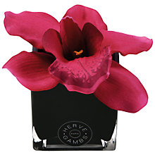 Buy Hervé Gambs Orchid Flowers in a Mini Glass Cube, Fuchsia Online at johnlewis.com