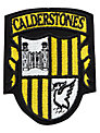 Calderstones School Unisex Blazer Badge, Multi