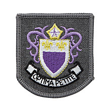 Buy Rudston Preparatory School Girls' Hat Badge Online at johnlewis.com