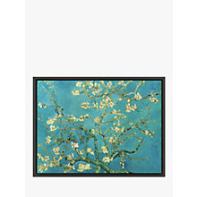 Buy Van Gogh - Almond Blossom Online at johnlewis.com