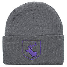 Buy Daiglen School Boys' Embellished Ski Hat, Grey Online at johnlewis.com