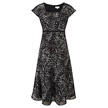 Buy CC Petite Floral Striped Dress Online at johnlewis.com