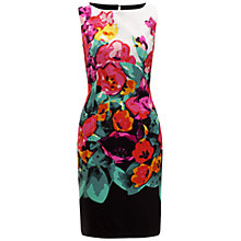 Buy Adrianna Papell Border Print Sheath Dress, Multi Online at johnlewis.com