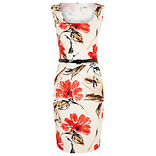 Buy Precis Petite Modern Floral Dress Online at johnlewis.com