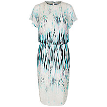Buy Damsel in a dress Dragonfly Printed Silk Blend Dress, Multi Online at johnlewis.com