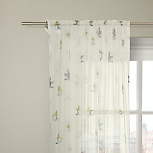 Buy John Lewis Pipit Voile Panel Online at johnlewis.com