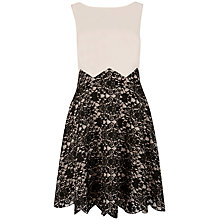 Buy Ted Baker Lace Slash Neck Dress, Shell Online at johnlewis.com