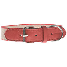 Buy Mungo & Maud Preppy Collar Online at johnlewis.com