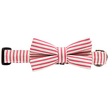 Buy Purplebone Pink Stripe Bow Tie Dog Collar Online at johnlewis.com