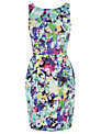 Coast Jennifer Dress, Multi