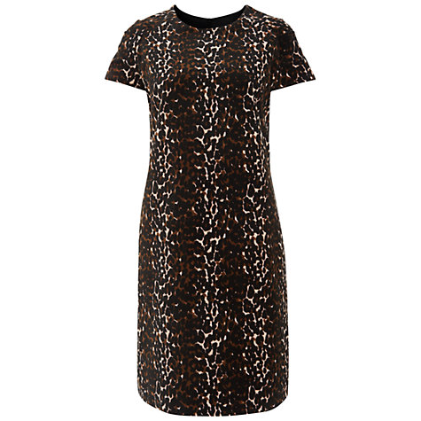 Buy Havren Animal Print Velvet Dress, Multi Online at johnlewis.com