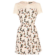 Buy Oasis Bird Print Skater Dress Online at johnlewis.com