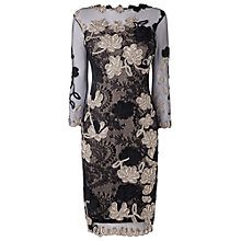 Buy Phase Eight Fifi Tapework Dress, Black/Champagne Online at johnlewis.com