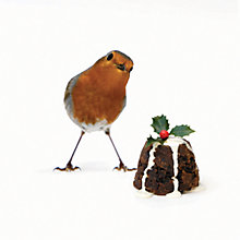 Buy CCA Personalised Red Robin And Pudding Charity Christmas Cards Online at johnlewis.com
