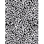 Buy John Lewis Petal Burst Twist Front Control Swimsuit, Black / White Online at johnlewis.com