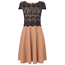 Buy Phase Eight Cassie Lace Mix Dress, Black/Camel Online at johnlewis.com