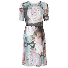 Buy Kaliko Multi Canvas Rose Day Dress, Multi Online at johnlewis.com
