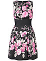 Almari Floral Pleat Dress, Black/Pink