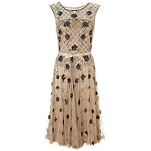 Buy Gina Bacconi Beaded Full Skirt Dress, Champagne Online at johnlewis.com