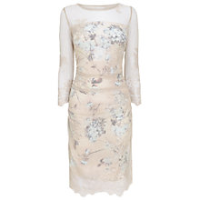 Buy Phase Eight Bridgette Lace Dress Online at johnlewis.com