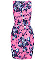 Closet Rose Print Zip Dress, Pink