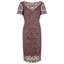 Buy Alexon Lace Shift Dress, Chocolate Online at johnlewis.com