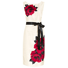 Buy Jacques Vert Exclusive Rose Print Dress, Powder Puff Online at johnlewis.com