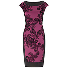 Buy Gina Bacconi Velvet Paisley Stretch Dress, Berry Online at johnlewis.com