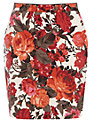 Oasis Painted Rose Mini Skirt, Multi