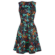 Buy Warehouse Butterfly Print Scuba Dress, Multi Online at johnlewis.com