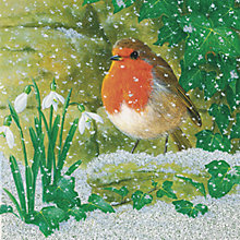 Buy CCA Personalised Colours of Winter Charity Christmas Cards Online at johnlewis.com