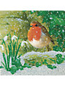 CCA Personalised Colours of Winter Charity Christmas Cards
