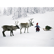 Buy CCA Personalised Meeting the Reindeer Charity Christmas Cards Online at johnlewis.com