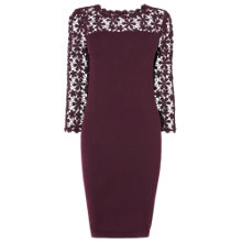 Buy Phase Eight Suzy Lace Dress, Blackberry Online at johnlewis.com