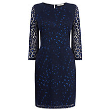 Buy Oasis Animal Burnout Dress, Rich Blue Online at johnlewis.com