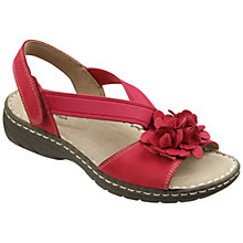 Buy Hotter Molly Flat Nubuck Flower Sandals Online at johnlewis.com