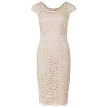 Buy Jacques Vert Elegant Lace Dress, Champagne Online at johnlewis.com
