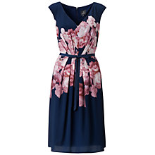 Buy Adrianna Papell Rose Print Pleat Dress, Multi Online at johnlewis.com