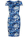 Gina Bacconi Pleated Floral Print Dress, Blue
