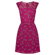 Buy Oasis Bloom Bird Lace Trim Skater Dress, Berry Online at johnlewis.com