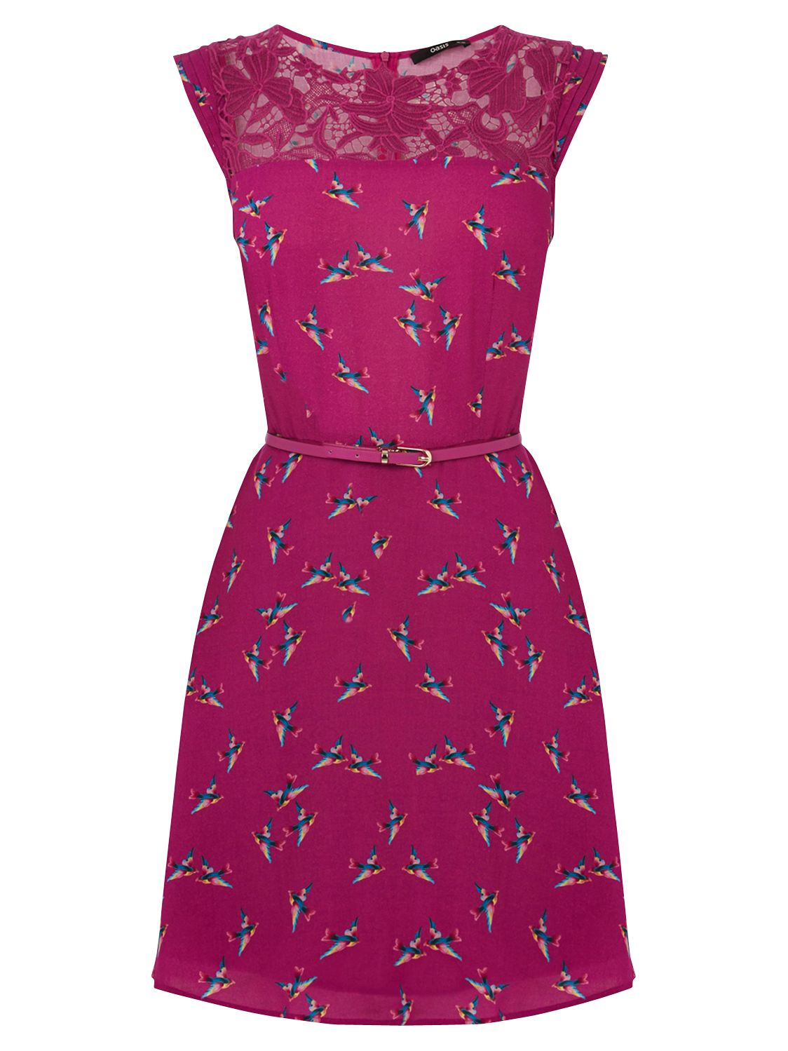 oasis bloom bird lace trim skater dress berry, oasis, bloom, bird, lace, trim, skater, dress, berry, 14|10|8|16|12, women, womens dresses, 1866366