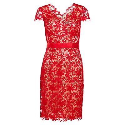 Gina Bacconi Grosgrain Belt Lace Dress, Red