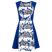 Buy French Connection Bonita Stripe Skater Dress, Monarch Blue/White Online at johnlewis.com