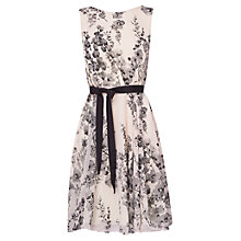 Buy Phase Eight Evette Dress, Candy/Grey Online at johnlewis.com